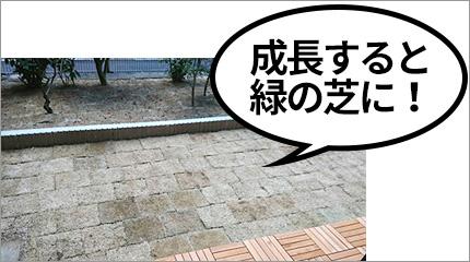 吹田市マンションリノベーションポイント
